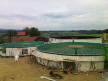 silonetz-1