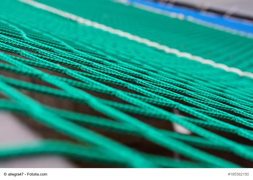 Ballfangnetz kaufen
